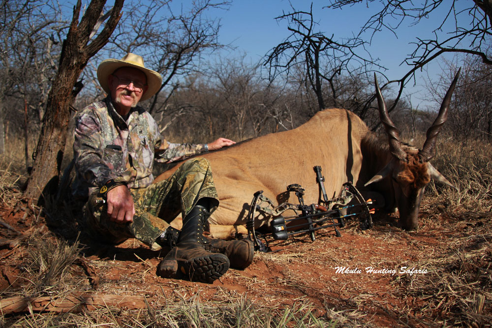 Bow hunting eland