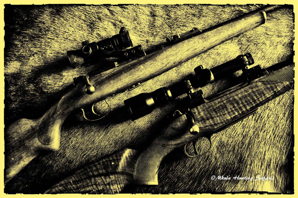 Best caliber for hunting big game in Africa
