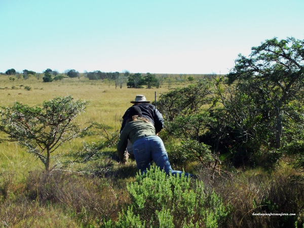 Hunting in Eastern Cape