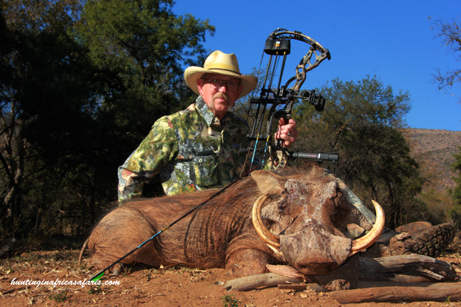 Hunting warthog with bow