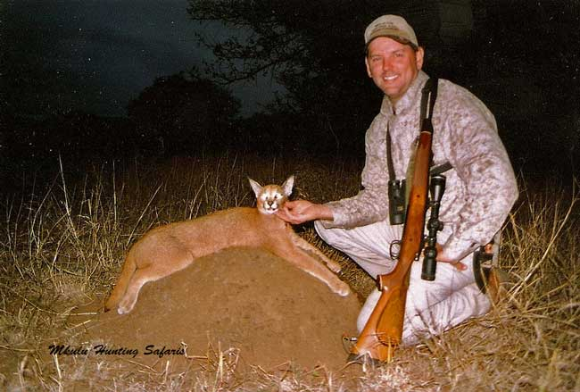 Caracal hunting prices South Africa
