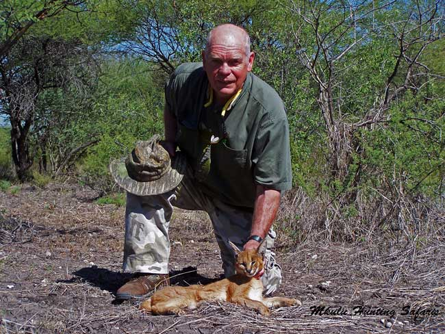 Hunting caracal South Africa best time of year