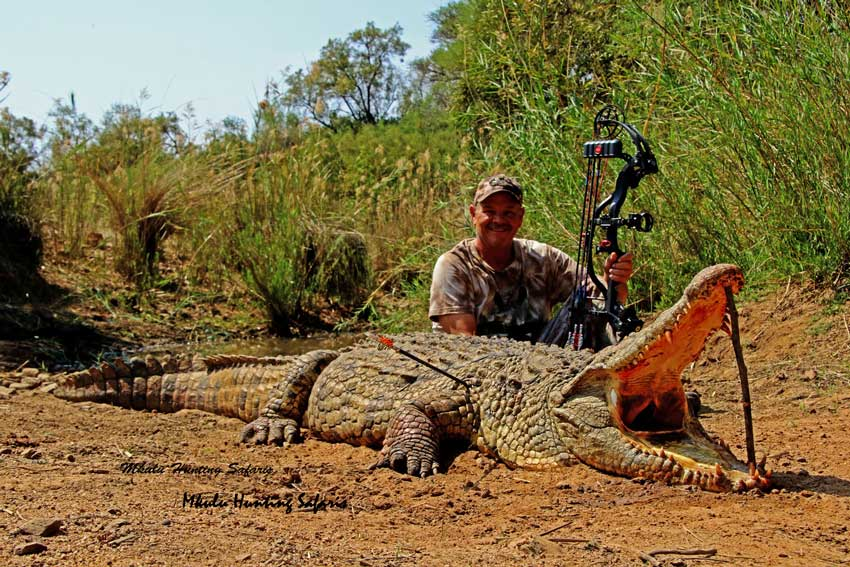 Bow hunting crocodiles in Africa